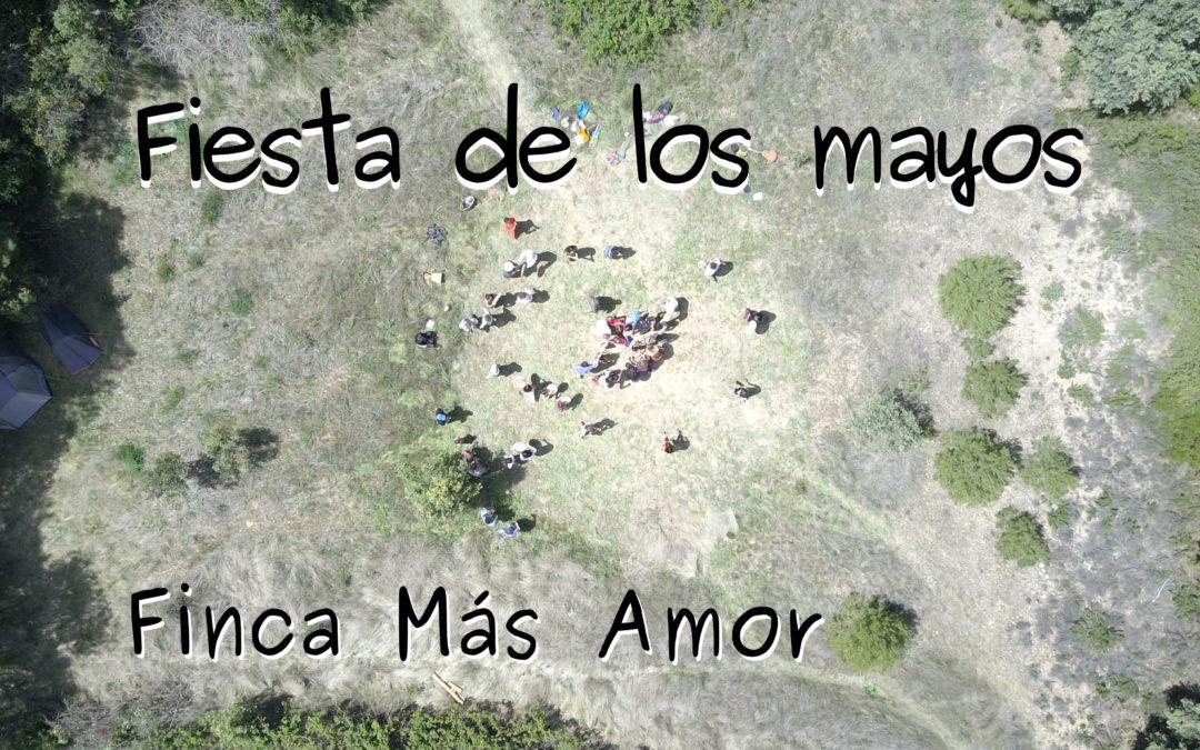 Fiesta de los Mayos